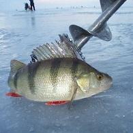 Картинка Зимняя рыбалка